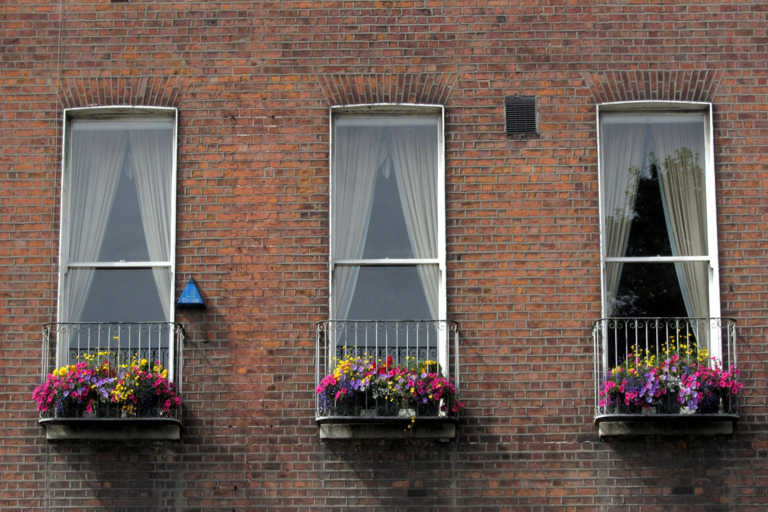 townhouse windows, Parnell Sq