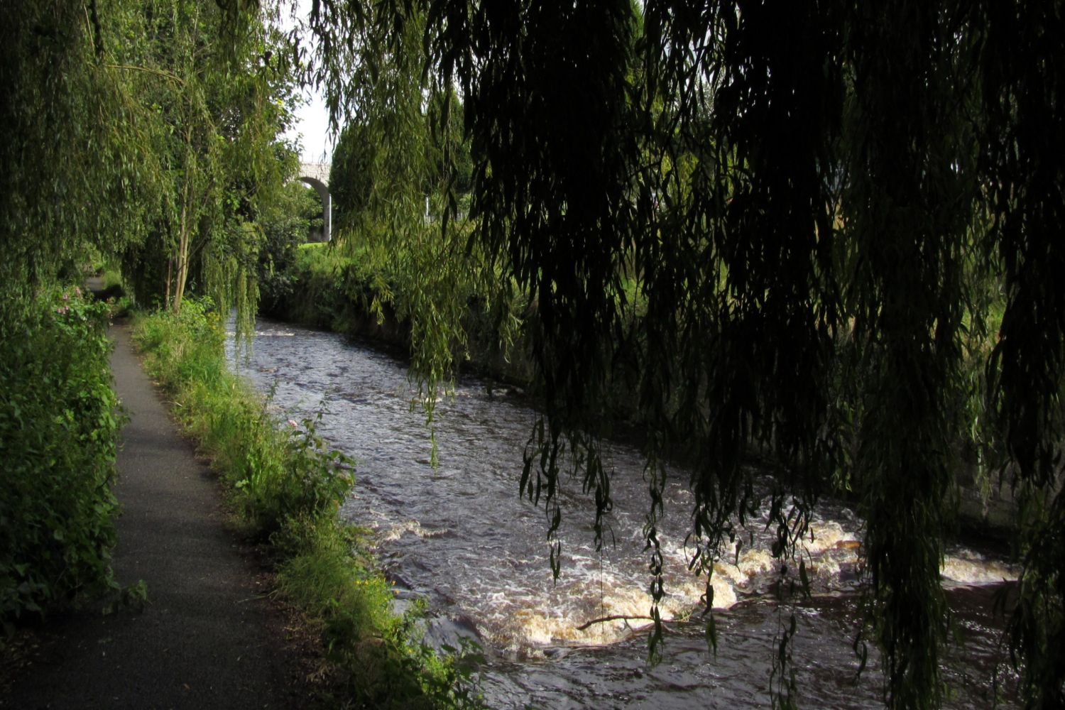 River Dodder walk